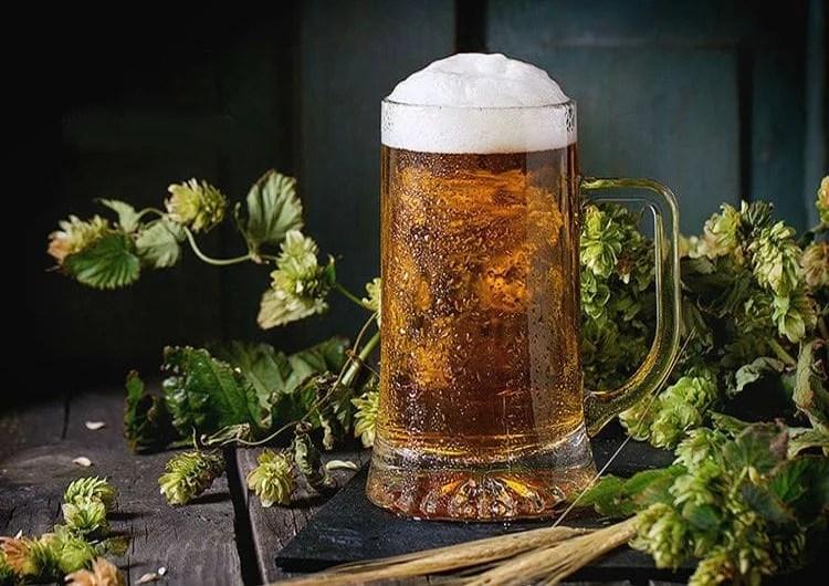 Bière blonde et cônes de houblon