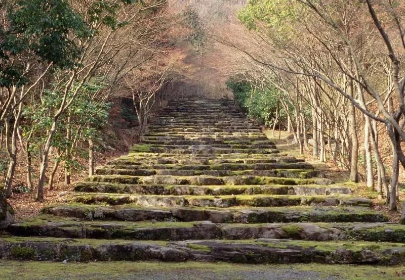 Les escaliers en terrasse de l'Aman Kyoto