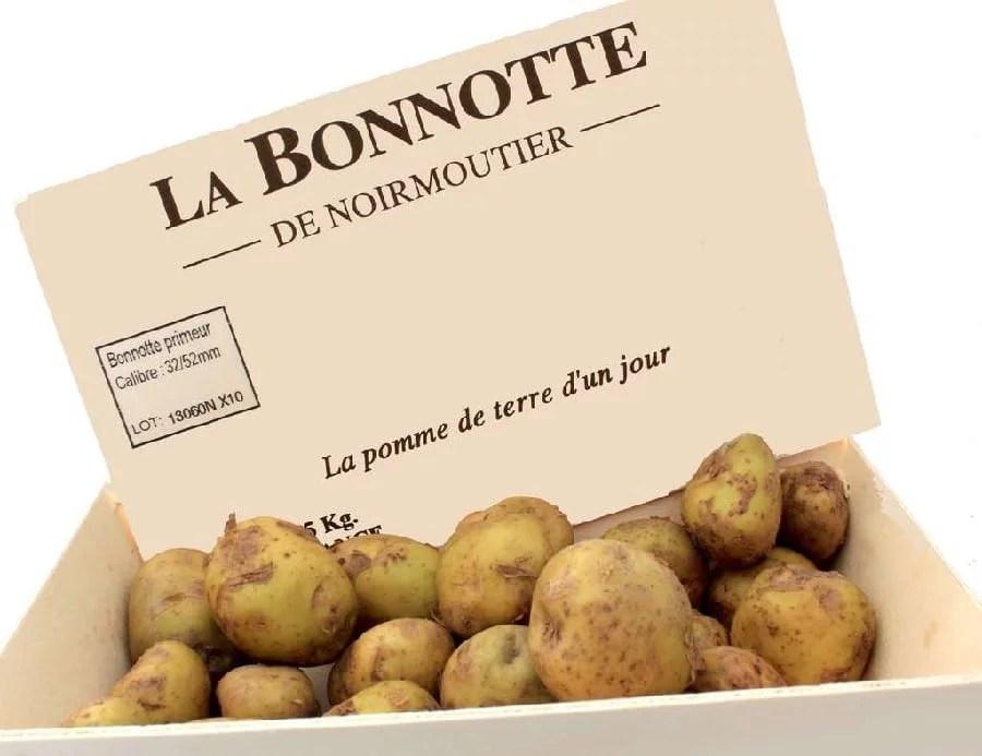 Pomme de terre Bonnotte de Noirmoutier