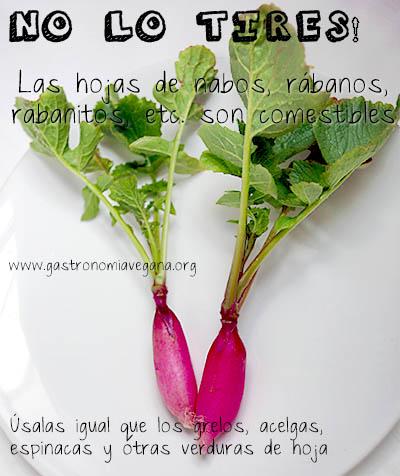 Las hojas de los rabanitos son comestibles