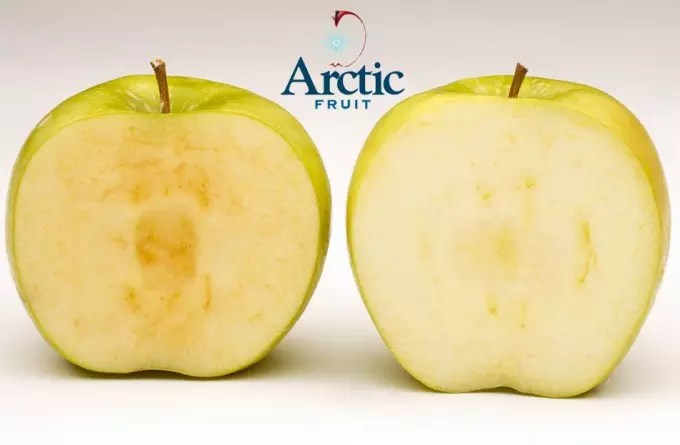 Arctic Golden y Arctic Granny