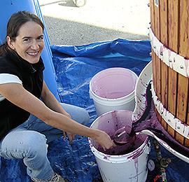 winemaker melanie krause