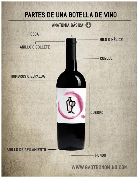 Partes de una botella de vino