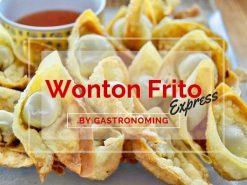Wonton frito express