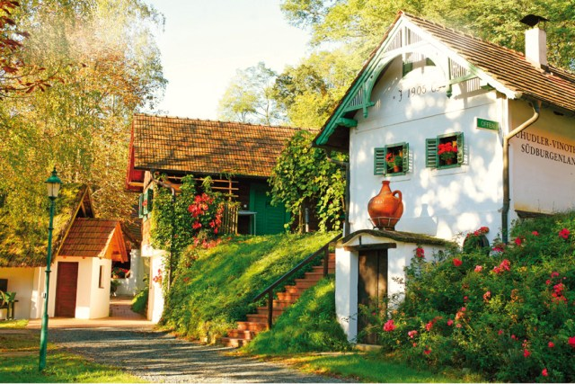 Burgenland Wein Kulinarik