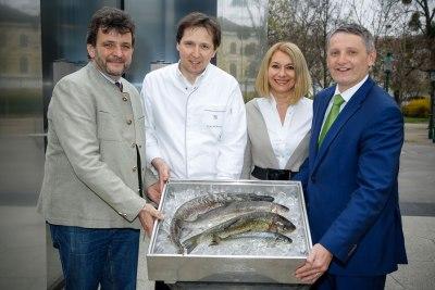Wildfisch Nachhaltigkeit Gastronomie