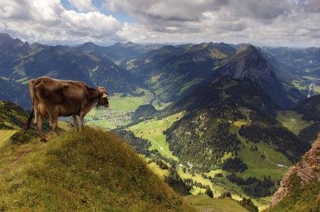 Tourismus-Tagung im Bregenzerwald BÖTM