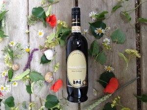 Bio Wein Roter Veltliner vom Wagram Hausdorf Flasche 1