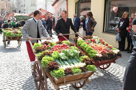 Saisonauftakt in Hall in Tirol Radieschenfest