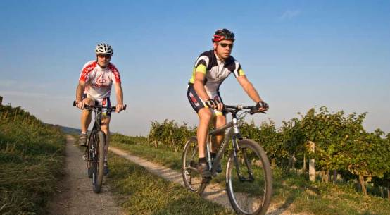 Radsternfahrten durch Niederösterreich