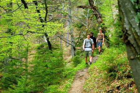 WEB_Medienstipendien--Nationalparks-Austria-unterstützt-heimische-Nachwuchstalente