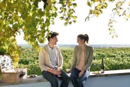 Startschuss für Weinherbst Niederösterreich