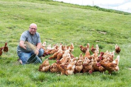 Freilandeier aus Österreich : Franz Breitenfelder stellte seinen Betrieb im Jahre 2010 von Milchvieh- auf Freilandhühnerhaltung um.
