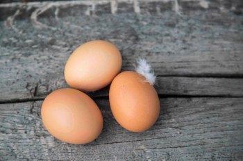 Die Eier werden einer umfassenden Qualitätskontrolle unterzogen und wandern danach in eine hochmoderne Sortiermaschine.