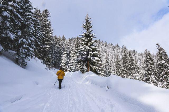 Paket Wintertourismus