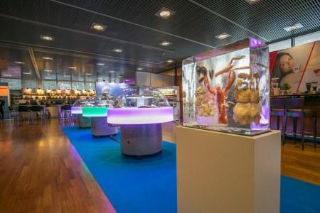 Wedl will im September im Rahmen seiner Hausmesse in Innsbruck wieder möglichst viele Kunden von seinem Angebot überzeugen.