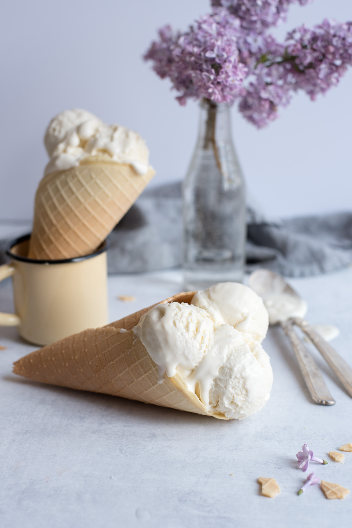 Homemade Plombir Ice Cream