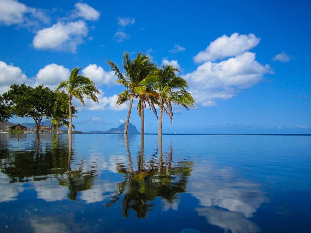 Mauritius: the complete guide to paradise - #mauritius #islands #beach #travel #travelblogger #foodie #restaurants #sailing #rum #tea #thingstodo #sightseeing #africa #market #shopping #diving #snorkel #hiking #nature #whattosee #travelguide