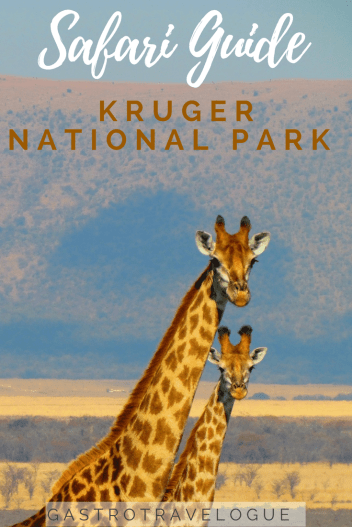 Safari Travel Guide to Kruger