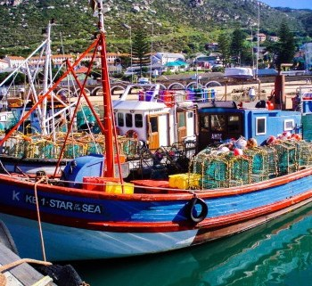 Fishing boats in Kalk Bay harbour