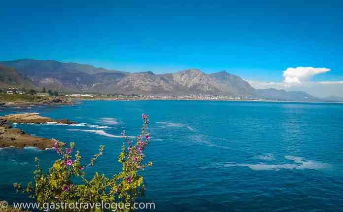 Beautiful coastline Cape Town South Africa
