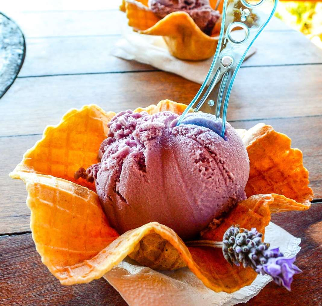 Where to find the best gelato when you are in Italy - #italy #gelato #foodie #rome #sorrento #firenze #florence #sorrento #travel #foodieguide #gourmet #italie #artisinal #gelatoinitaly #italy_travel #gelato_florence #gelato_rome