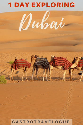 See Dubai in one day- #dubai #sightseeing #miracelgarden #dubaimall #dubaiframe #travel #travelblog #oldtown #architecture #history #thingstodo #boats #itinerary #desert #architecture #traveldubai #traveltips #asia #UAE