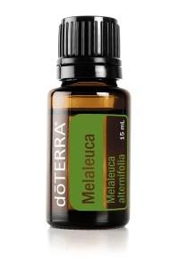 Melaleuca Essential Oil