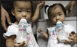 China dried milk powder