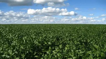 Argentina farmland investment pending order in forex