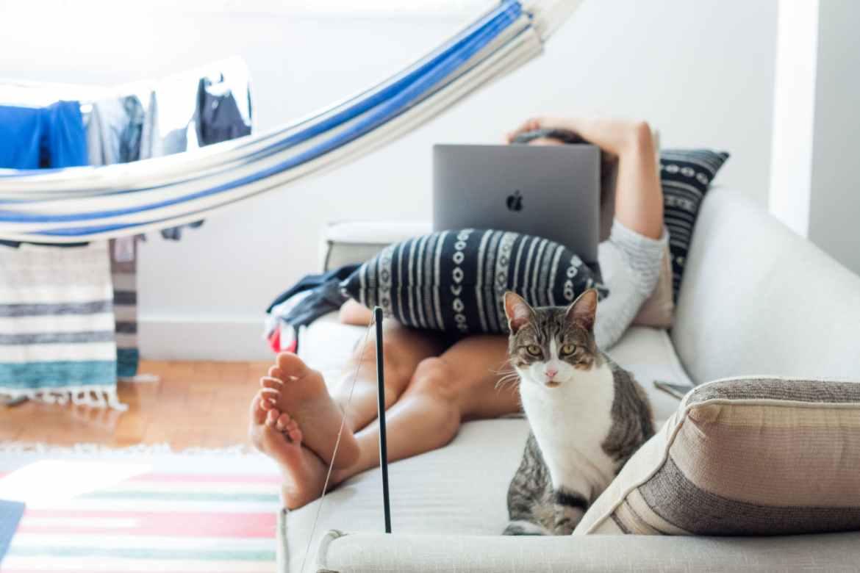 scrivi per gattoblog