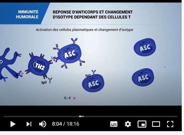 Read more about the article Pandémie : à voir et à lire