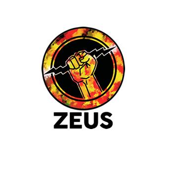 IEEE Zeus