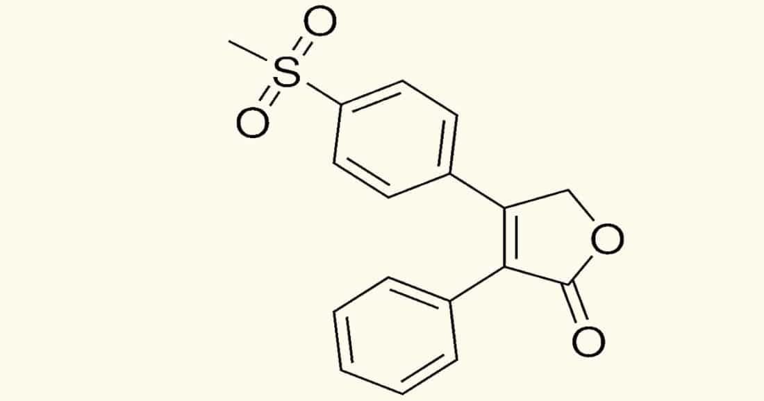 ויוקס תרופה קטלנית