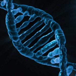 אריכות ימים זה בעיקר גנטיקה