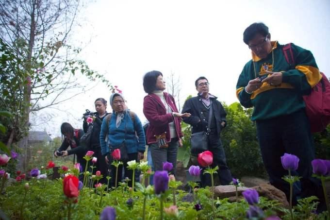 Tai-Yi Ecological Leisure Farm