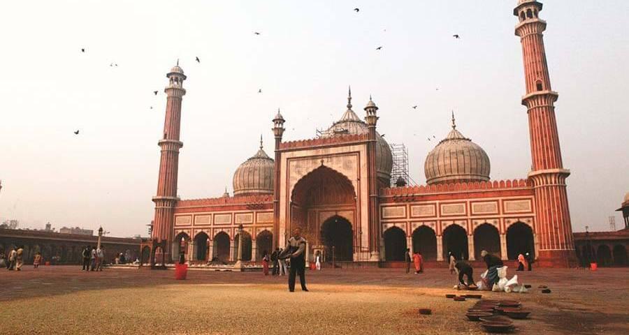 ?? Majestic India – Delhi