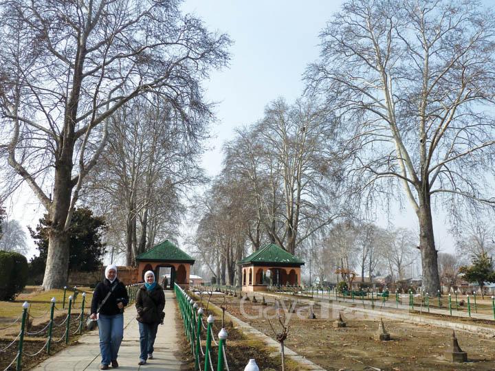 Heritage Mughal Gardens : Nishat and Shalimar