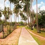 The road to Homestay Nelayan Pantai