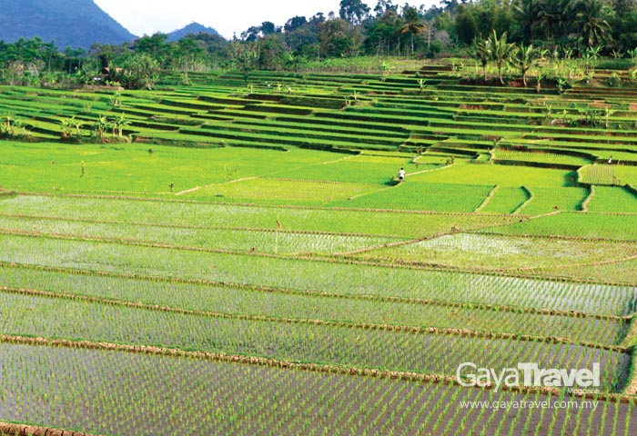 Garut : The Road Less Travelled