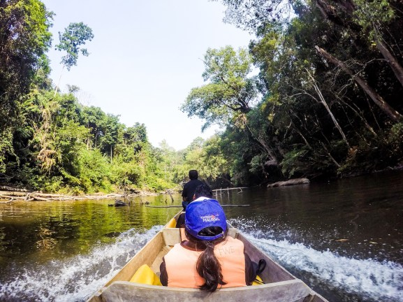 Taking a boat cruise along Sungai Tahan is another way to savour the beauty of this ancient rainforest
