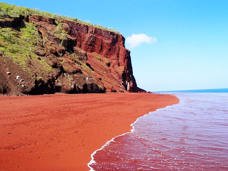 Colour Your World – One Beach At a Time