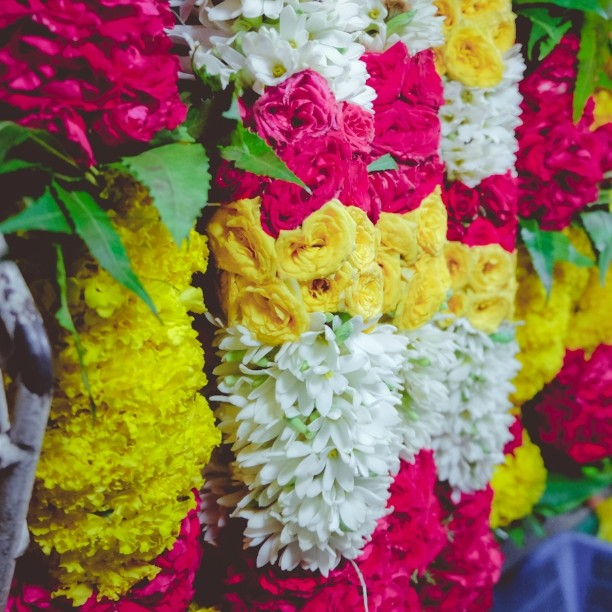 Jothi Store and Flower Shop