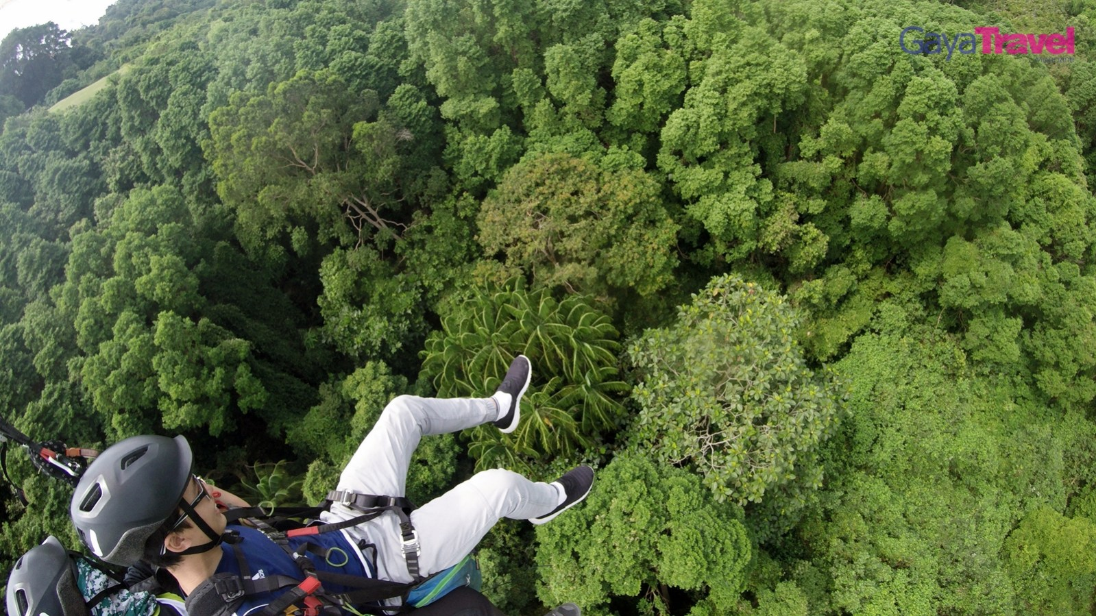 The writer enjoying the lush green forest view from above during the flight.