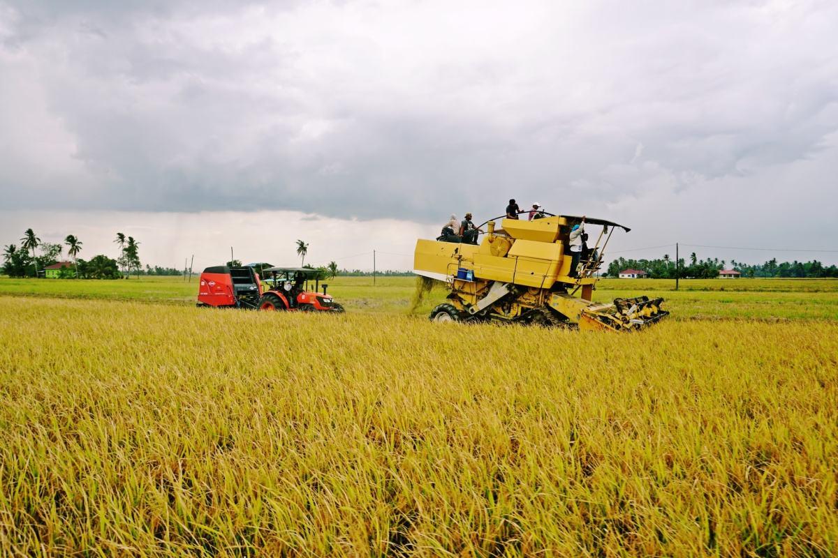 17 Agrotourism Hotspots in Kedah & Perlis