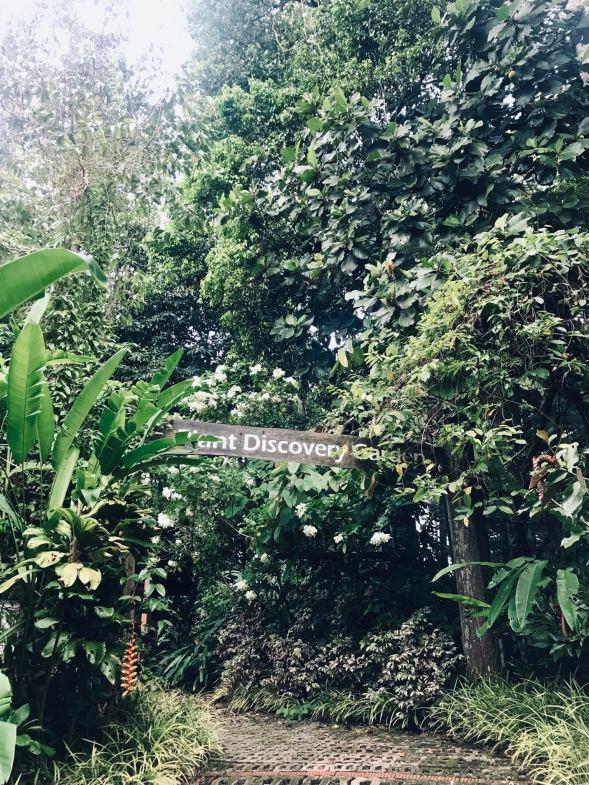 RDC's Plant Discovery Garden
