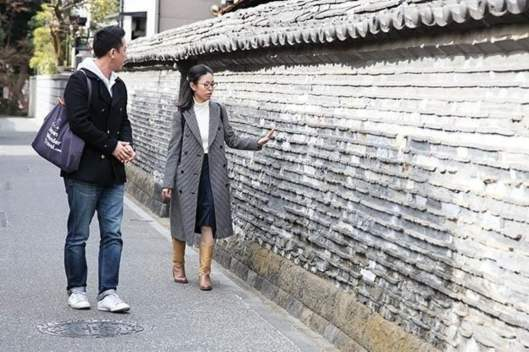 Visit a Historical Yanaka with a Local