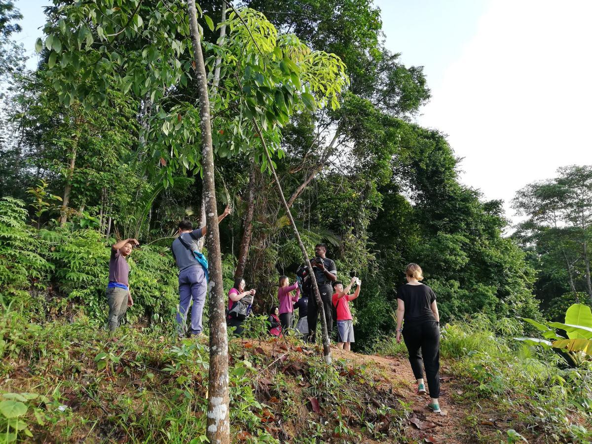 Temuan Village Trail
