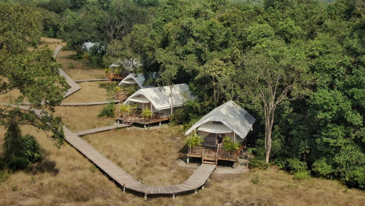 Ecotourists Staying Away Put Wildlife in Danger in Cambodia