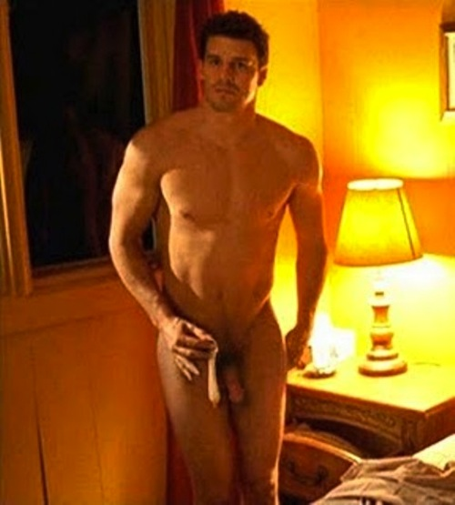 David Boreanaz naked (7)